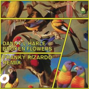 Danny L Harle – Broken Flowers (Franky Rizardo Remix)